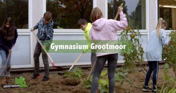 Der neue Film über das Grootmoor